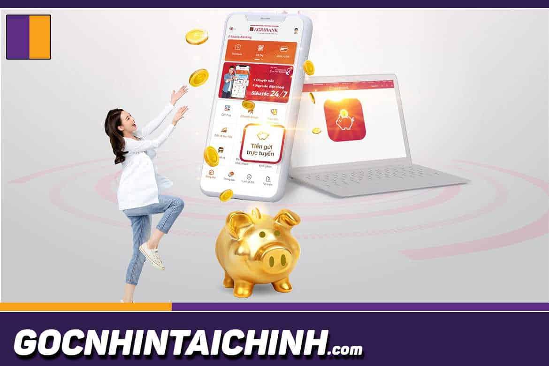 Dịch vụ E Commerce Agribank là gì